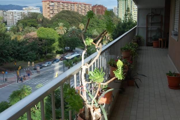 Vender Malaga - Cruz de Humilladero-Los Tilos de HERMOSO PISO EN ZONA PUENTE DE LAS AMERICAS - 1
